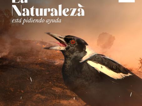 WWF llama a escuchar a la naturaleza frente a los incendios forestales