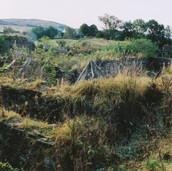 508 Mill of Ogilvie 2005