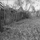 466 Mill of Ogilvie 2005