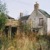 499 Mill of Ogilvie 2005