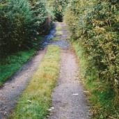 457 Mill of Ogilvie 2005
