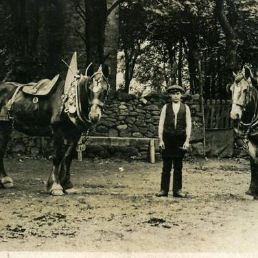306 George McDonald with Horses at Kirkton 1913