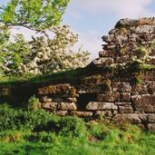 567 Ogilvie Castle June 2006