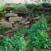 566 Ogilvie Castle June 2006