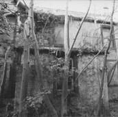 463 Mill of Ogilvie 2005