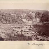 1170 The Danny 1886
