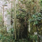 509 Mill of Ogilvie 2005
