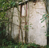 461 Mill of Ogilvie 2005