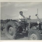 833 Man on Massey Fergusson Tractor