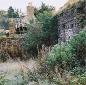 486 Mill of Ogilvie 2005