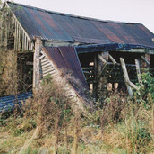 477 Mill of Ogilvie 2005