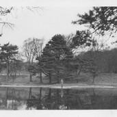 909 White Muir Ponds