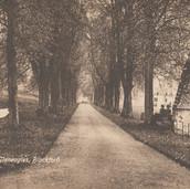 863 The Avenure, Gleneagles, Blackford