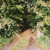 458 Mill of Ogilvie 2005