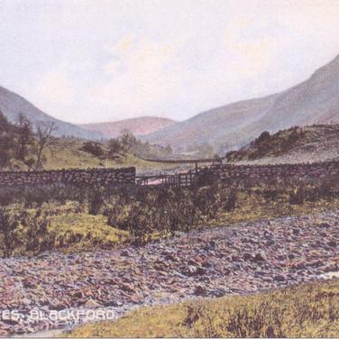 1061 Gleneagles Backford