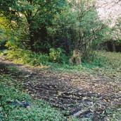 468 Mill of Ogilvie 2005