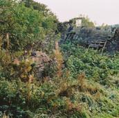 480 Mill of Ogilvie 2005