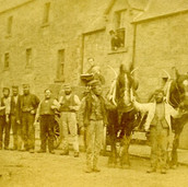 286 Duncan McLaren with Horses at Sharp's Brewery