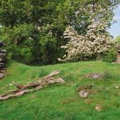 559 Ogilvie Castle June 2006