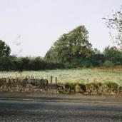 455 Mill of Ogilvie 2005