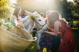 Lyons Wedding-3763.jpg