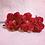 Thumbnail: Rose Love