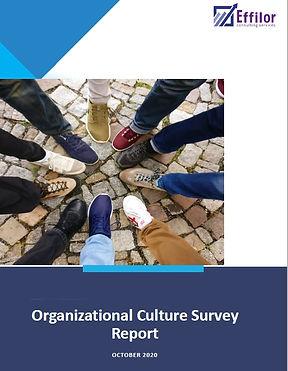 Org Culture Report.jpg