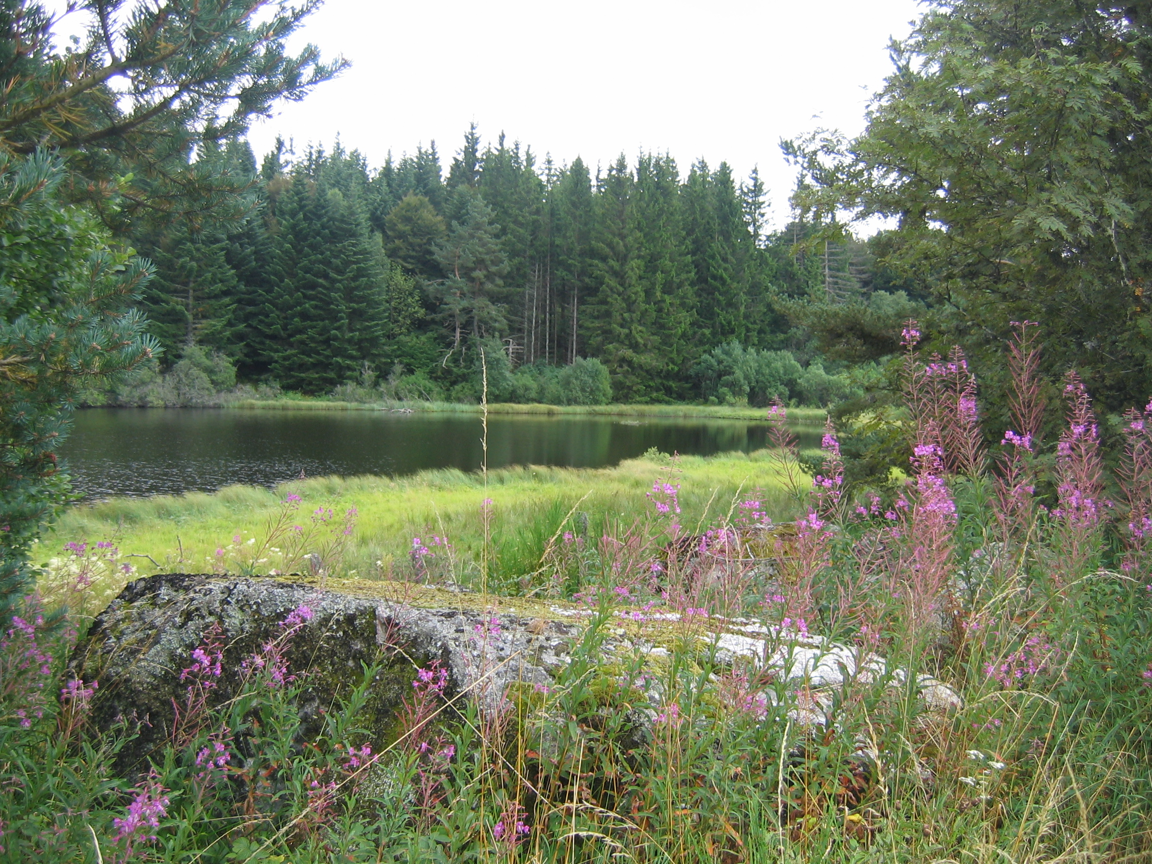 Lac des Baumes