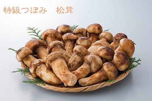 中国産 急速冷凍松茸 つぼみ 500g