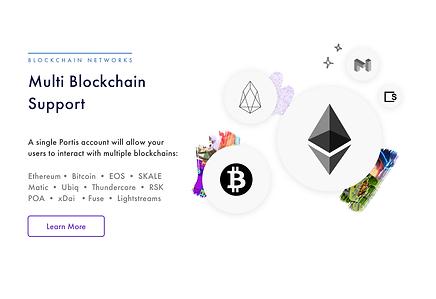 multi blockchain.png