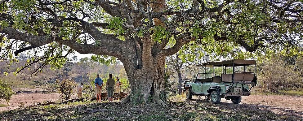 Lukimbi-Safari-Rest.jpg