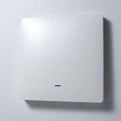 Smart WiFi + RF433 Switch