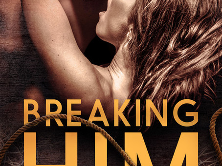 Book Review: Breaking Him by Sherilee Gray