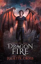 Dragon Fire Book Cover.jpg