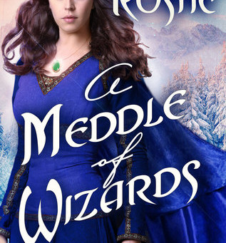 Book Review: A Meddle of Wizards by Alexandra Rushe