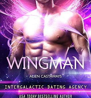 Book Review: Wingman by Cara Bristol