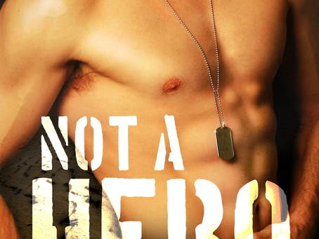 Book Review: Not A Hero by Sarah Robinson