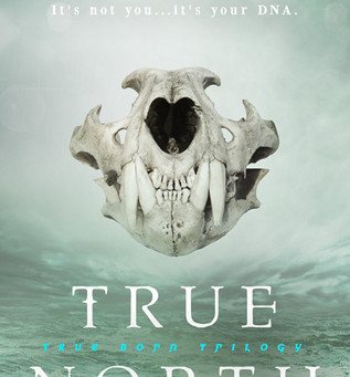 Blog Tour: True North by L.E. Sterling