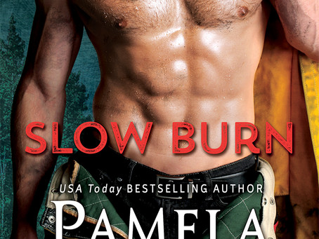 Book Review: Slow Burn by Pamela Clare