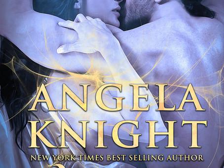Blog Tour: Paladin by Angela Knight