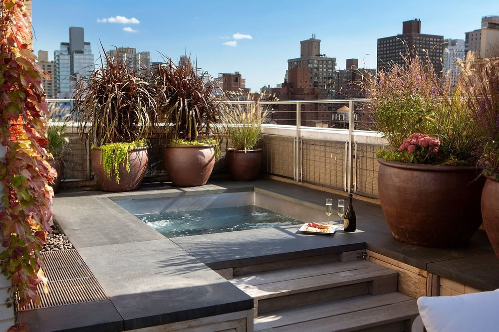 823 Park Avenue Penthouse Terrace