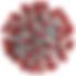 coronavirus-rojo_410fd3c7_800x800.png