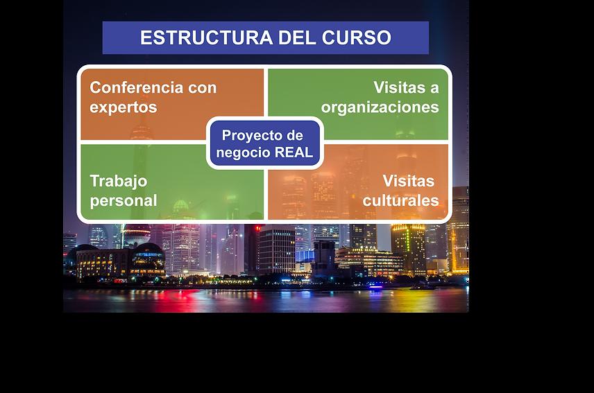 Estructura-Curso-Belivit-01-B.png