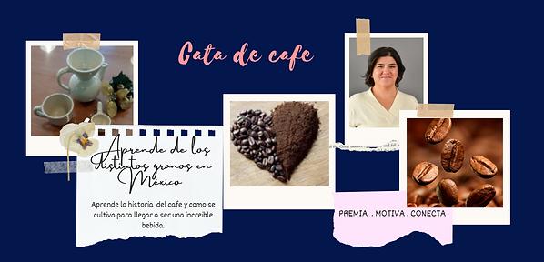 Página Web Boda Eventos Flor Rosa (4).pn