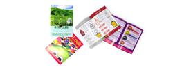 brochure design companies, brochure designing services, business brochures design, corporate graphic