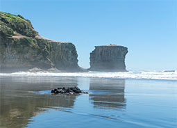 Muriwai New Zealand