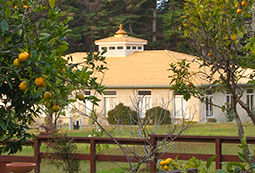 Sthapathya Veda Building at Maharishi Spiritual Captal of New Zealand
