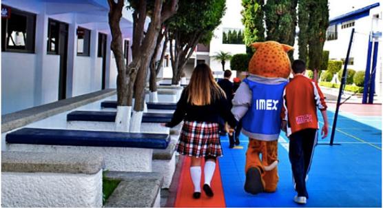 IMEX ES POP.png