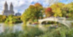 Beautiful foliage colors of New York Cen