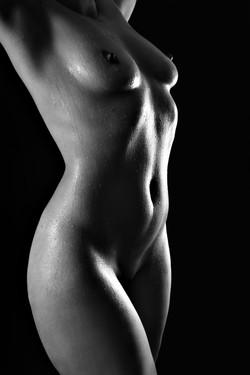 akt weiblicher torso
